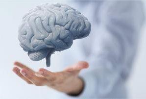 Эксперты назвали важное условие здоровья мозга