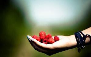 Кушая горстку ягод каждый день, ты снижаешь риск сердечных заболеваний на 40%