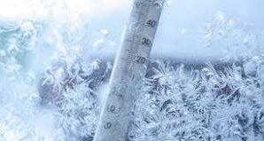 Учёные: низкая температура продлевает длительность жизни организма за счёт особых генов